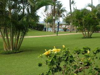 Maui Sunset 112A ~ 1 Bedroom/2 Bath, Ground Floor, Ideal for Families! - Kihei vacation rentals