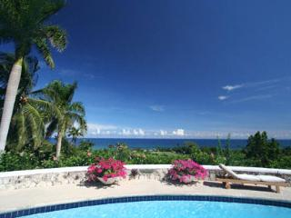 Charming Montego Bay vacation House with DVD Player - Montego Bay vacation rentals