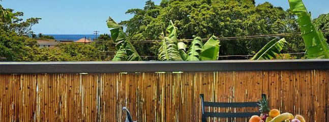 Sunny Condo with Internet Access and Dishwasher - Koloa vacation rentals