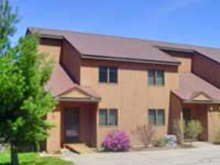 Bartlett NH Condo Rental - Image 1 - Bartlett - rentals