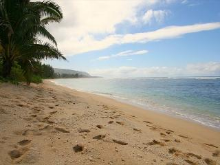 Directly oceanfront, beach to yourself, 2 bedrooms, incredible reviews - Honolulu vacation rentals