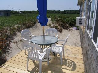 Beautiful Cottage with Deck and Internet Access - East Sandwich vacation rentals