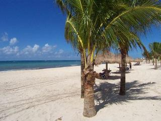 At San Francisco Beach.Great Rate! 2 Pools. Fast Internet, Near Reefs, Dining - Cozumel vacation rentals