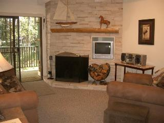 Ten Mile Island Condo Downtown Frisco Colorado Lodging - Frisco vacation rentals