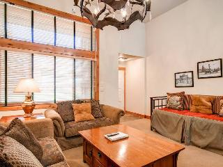Cedars 16 - Ski-In/Ski-Out - Breckenridge vacation rentals