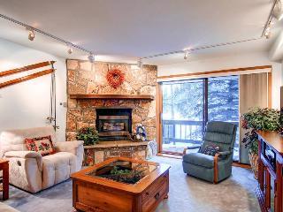 Atrium 103 - Breckenridge vacation rentals