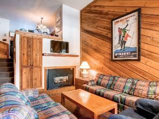 Cedars 47 - Ski-In/Ski-Out - Breckenridge vacation rentals