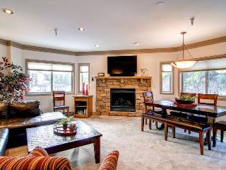 Village at Breckenridge 1025 - Ski-In/Ski-Out - Breckenridge vacation rentals