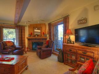 Double Eagle B12 - Walk to Lifts/Walk to Town - Breckenridge vacation rentals