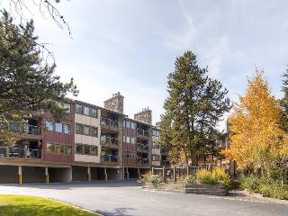 Park Place 104B - Walk to Lifts/Walk to Town - Breckenridge vacation rentals