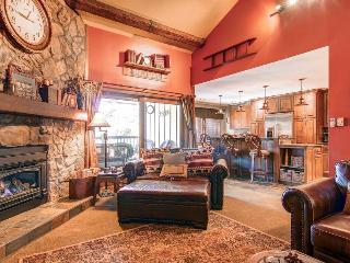 Park Place 304B - Walk to Lifts/Walk to Town - Breckenridge vacation rentals