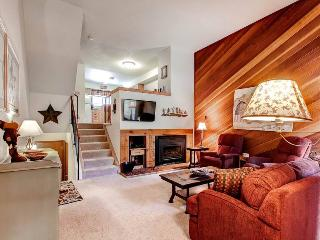 Winterpoint 22 - Walk to Lifts/Walk to Town - Breckenridge vacation rentals