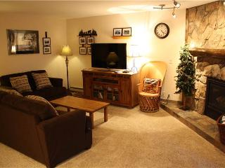 Economic Park Place Condominiums 2 Bedroom Condominium - PC104 - Breckenridge vacation rentals