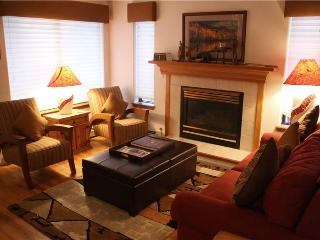 Park Forest  Estates #474 - Breckenridge vacation rentals