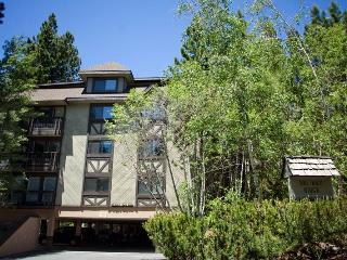 Penthouse Condo Close to Skiing and Golf (263SR) - Incline Village vacation rentals