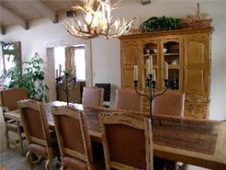 REMINGTON RETREAT - Image 1 - Aspen - rentals