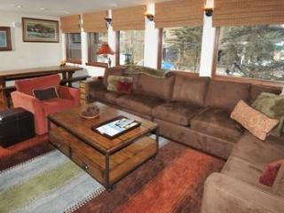 Wonderful 2 bedroom Condo in Vail - Vail vacation rentals