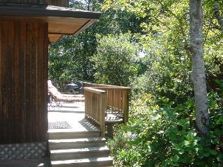 LITTLE APPLE COTTAGE,~GREAT LOCATION-in a quiet neighborhood in Manzanita OR! - Manzanita vacation rentals