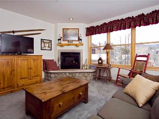 Nice Condo with Internet Access and Television - Breckenridge vacation rentals