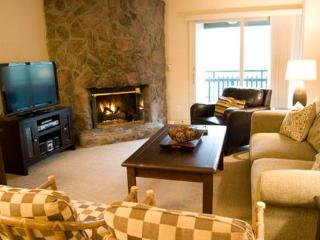 Evergreen 503, 2BD, 2BA condo - Vail vacation rentals
