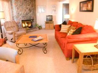 Evergreen 614, 1BD, 2BA condo - Vail vacation rentals