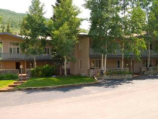 Vail Trails East 1B, 1BD condo - Vail vacation rentals