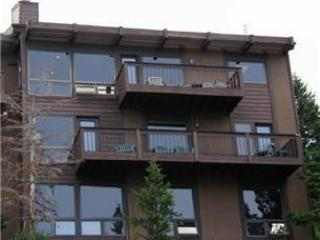 The Fromberg at Windcliff: Panoramic Rocky Mountain Views, 5 Bedrms, Wildlife - Image 1 - Estes Park - rentals
