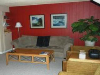 Lake Forest Glen 226 - Tahoe City vacation rentals