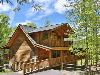 Wilderness Mountain - Sevierville vacation rentals
