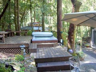 Perfect 3 bedroom Cabin in Guerneville with Deck - Guerneville vacation rentals