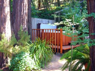 Sunny 1 bedroom House in Guerneville with Deck - Guerneville vacation rentals