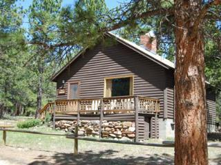 Cozy 2 bedroom Vacation Rental in Allenspark - Allenspark vacation rentals
