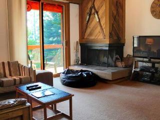 Northstar condo in Gold Bend, 2 bdrm, slps 6, pet ok - Northstar vacation rentals