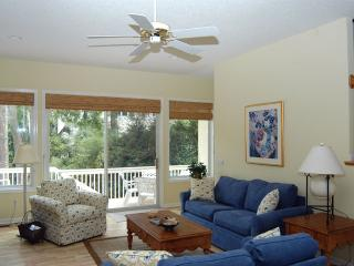 Bright House with Internet Access and Television - Hilton Head vacation rentals