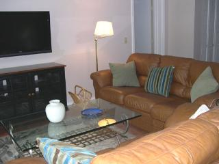 Comfortable Villa with Internet Access and Television - Hilton Head vacation rentals