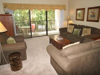 Village House 210 - Hilton Head vacation rentals