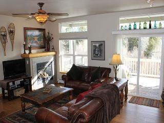 BRR120M Splendid Townhouse w/Garage, Wifi, Fireplace, - Silverthorne vacation rentals