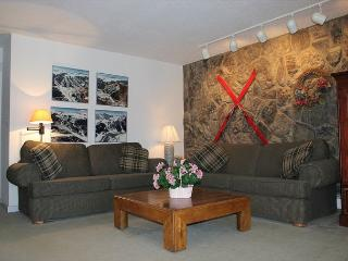 LC209F Inviting Condo w/Fireplace, Great Views, Wifi, Clubhouse - Silver Plume vacation rentals