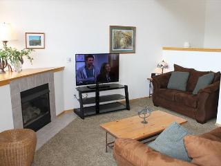 FP31E Super Townhome w/Wifi, Pet Friendly, Fireplace, Garage, Private Hot Tub - Silverthorne vacation rentals