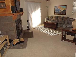 TH205I Fantastic Condo w/Wifi, Clubhouse, Mountain Views, Fireplace - Silverthorne vacation rentals
