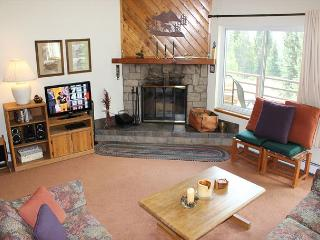 BR101C Nice Condo with Great Views, Wifi, Fireplace, Clubhouse & Carport - Silverthorne vacation rentals