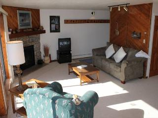 BR204B Ideal Condo w/Great Views, Wifi, Fireplace, Clubhouse & Carport - Silverthorne vacation rentals