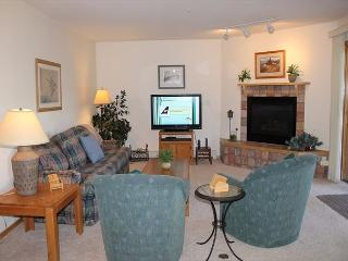 BR215G Comfy Condo w/Great Views, Wifi, Fireplace, Clubhouse & Carport - Silverthorne vacation rentals