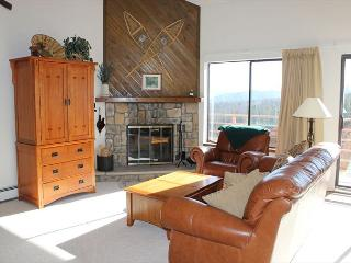 BR305E Prime Condo w/Great Views, Wifi, Fireplace, Clubhouse & Carport - Silverthorne vacation rentals
