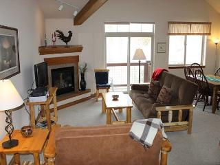 RB6D Inviting Condo w/Fireplace, Common Hot Tub, Private Laundry - Silverthorne vacation rentals