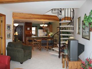SS101 Great Condo w/Fireplace, Clubhouse, Wifi - Silverthorne vacation rentals