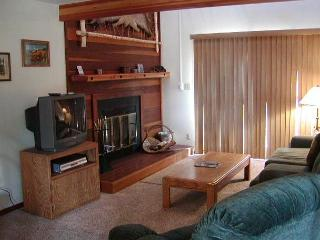 SS52 Ideal Condo w/Fireplace, Clubhouse, Wifi, King Bed - Silverthorne vacation rentals