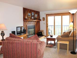 SS62 Choice Condo w/Fireplace, Clubhouse, Wifi - Silverthorne vacation rentals