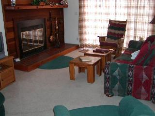 SS90 Inviting Condo w/Fireplace, Clubhouse, Wifi - Silverthorne vacation rentals