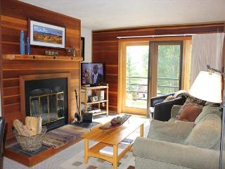 TR308 Lovely Condo w/Wifi, Clubhouse, Mountain Views, Fireplace - Silverthorne vacation rentals